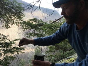 Lee Hensley releasing beetles in North Fork