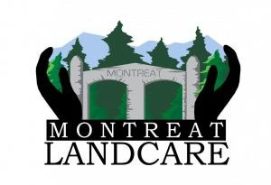 Saturday, April 28th, 2018: Montreat Arbor Day and Native Plant Sale