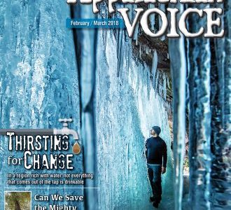 HRI and Hemlocks Featured in the Appalachian Voice