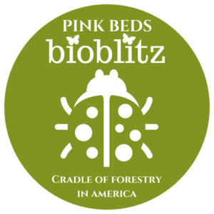 Saturday, June 16th, 2018: BioBlitz at the Cradle of Forestry