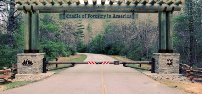 Saturday, August 11th, 2018: May the Forest Be With You: Cradle of Forestry