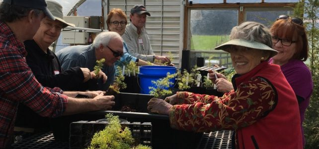 Saturday, October 26, 2019: Volunteer Work Day with the Forest Restoration Alliance
