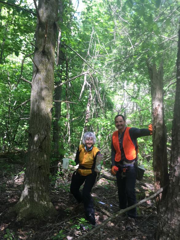 Saturday March 16 2019 Green River Green Love Hemlock Treatment Volunteer Day Hemlock Restoration Initiative