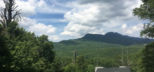 Friday, November 15th, 2019: Hemlock Outing with Grandfather Mountain Stewardship Foundation