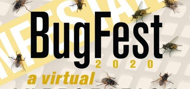 Friday, September 18, 2020: HWA Presentation at BugFest: A Virtual Infestation