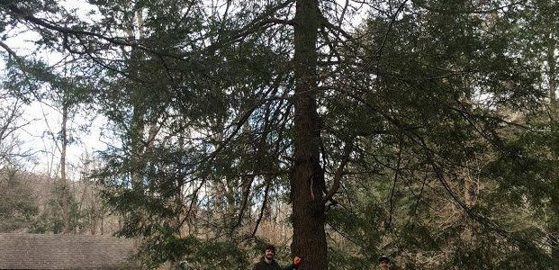 Saturday, December 5, 2020: River Loop Trail Hike in Pisgah National Forest–DATE TO BE RESCEDULED