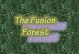 HRI Interview on Asheville FM's The Fusion Forest