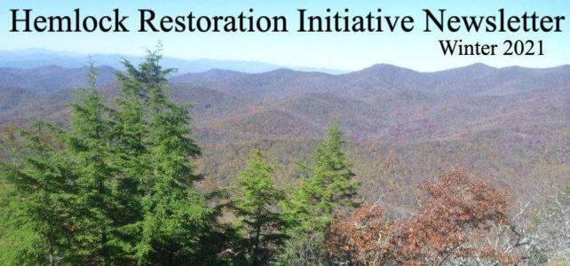Hemlock Restoration Initiative Newsletter–Winter 2021