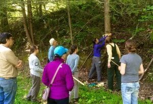 Friday, April 30, 2021: Hemlock Management Workshop at McDowell Technical Community College