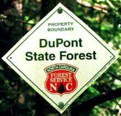 Sunday, June 6, 2021: Hike-and-Treat in DuPont State Forest