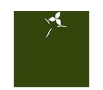 Tuesday, June 29, 2021: Hemlock Walk at Asheville Botanical Gardens